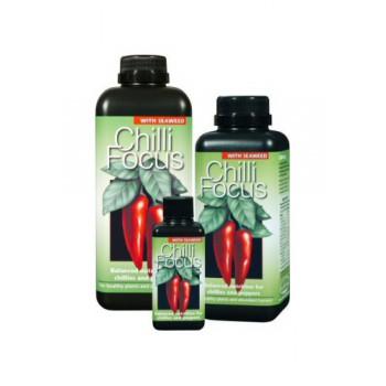 Chili focus 300 ml