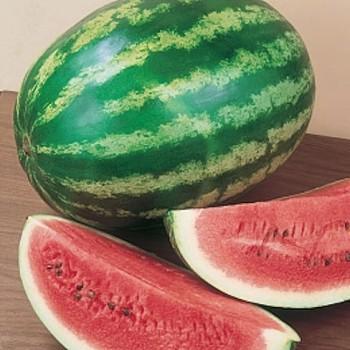 Watermeloen Crimson Sweet