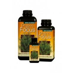 Palm focus 500 ml