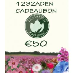 50 euro cadeaubon