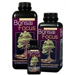 Bonsai Focus - 300 ml