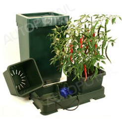 EASY2GROW 2 Incl. 47L watervat