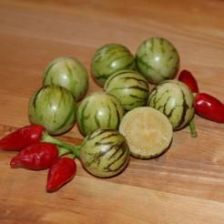 Mini pepino (Tzimbalo)